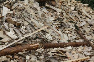 biomass alternative energy